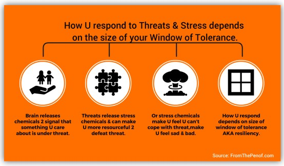 how you respond to threats depends on the size of your window of tolerance. With a big window you can take on the world.