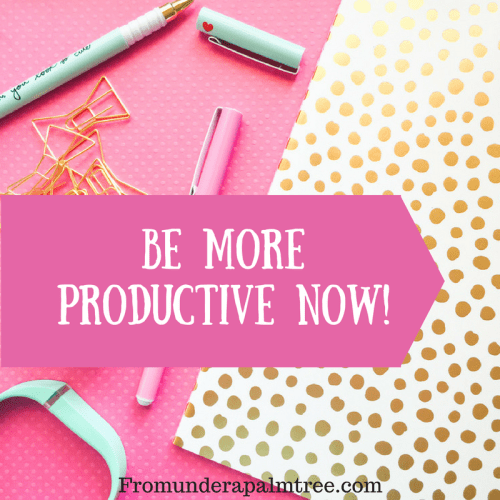 Be More Productive Now! By From Under a Palm Tree