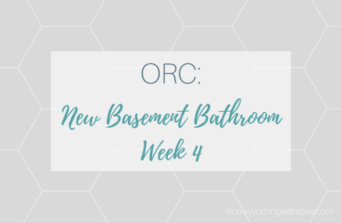 orc-new-basement-bathroom-week-4