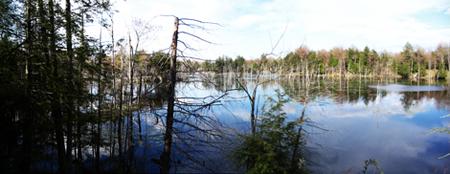 Hemlock Lake MAPS Site