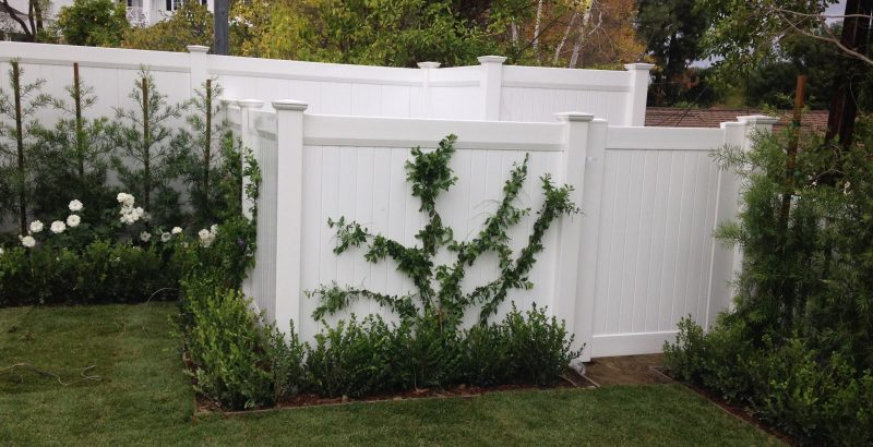 5-long-term-benefits-of-vinyl-fencing-over-wood-fencing