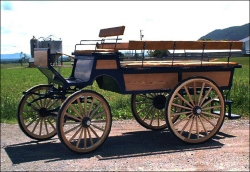 Robert Carriages 8 Passenger Wagonette