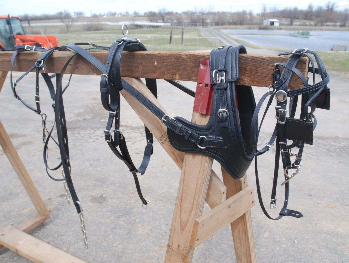 Sport Harness With Brollar Collar Cob Horse Mule Size