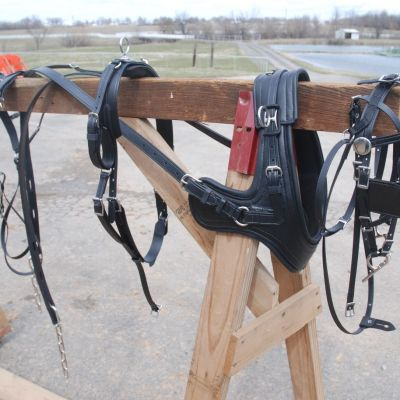sport brollar harness
