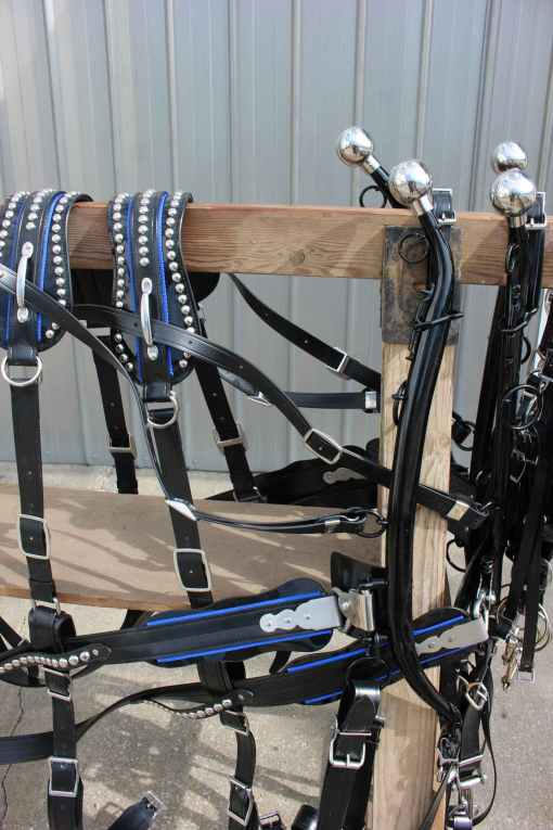draft-show-harness