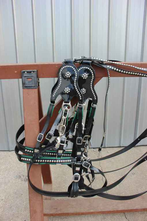 draft-show-harness
