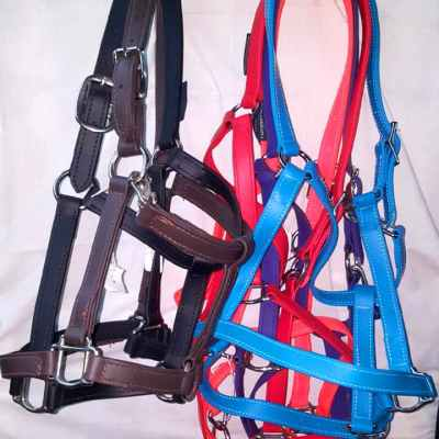 draft beta halters