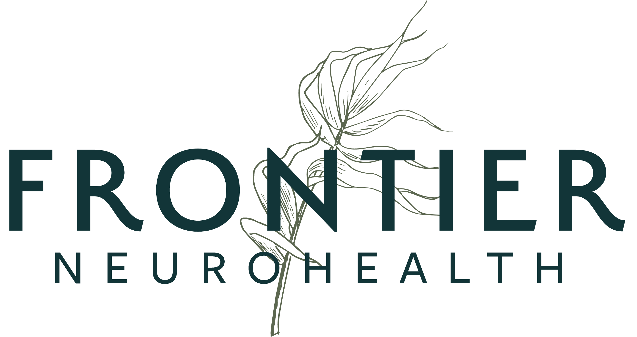 Frontier Neuro