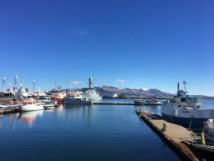 Overlooking Mount Esja, the Old Harbour area is a bustling area of town where visitors can depart for whale watching and puffin tours, visit the Maritime Museum, or visit one of the many restaurants and shops. The Harbour area is also the home of Harpa Concert Hall, an iconic building in the city.