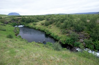 This pools had wild brown trout up to or more than 8lbs…