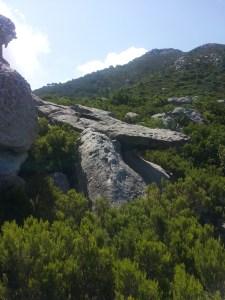 La pietra a forma di coccodrillo