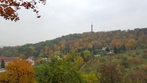 Immerso nella vegetazione, si intravede il punto panoramico della Collina di Petrin