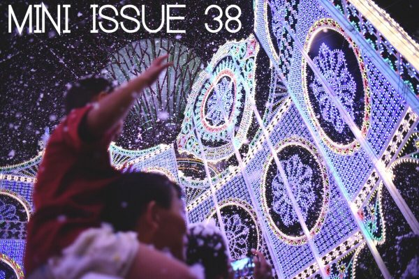 mini issue 38 carousel cover
