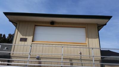White Contemporary Style Flush Garage door