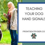 Teaching Your Dog Hand Signals