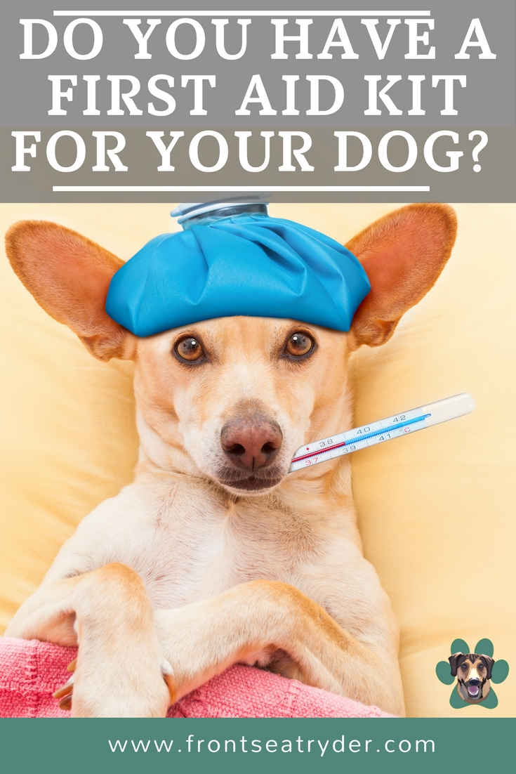 Do you have a first aid kit for your dog? Whether you are at home, hiking, camping or on the road. You can never be too prepared for a dog emergency!