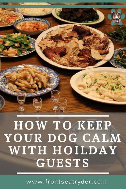 How to keep your dog calm when you have guests over for the holidays