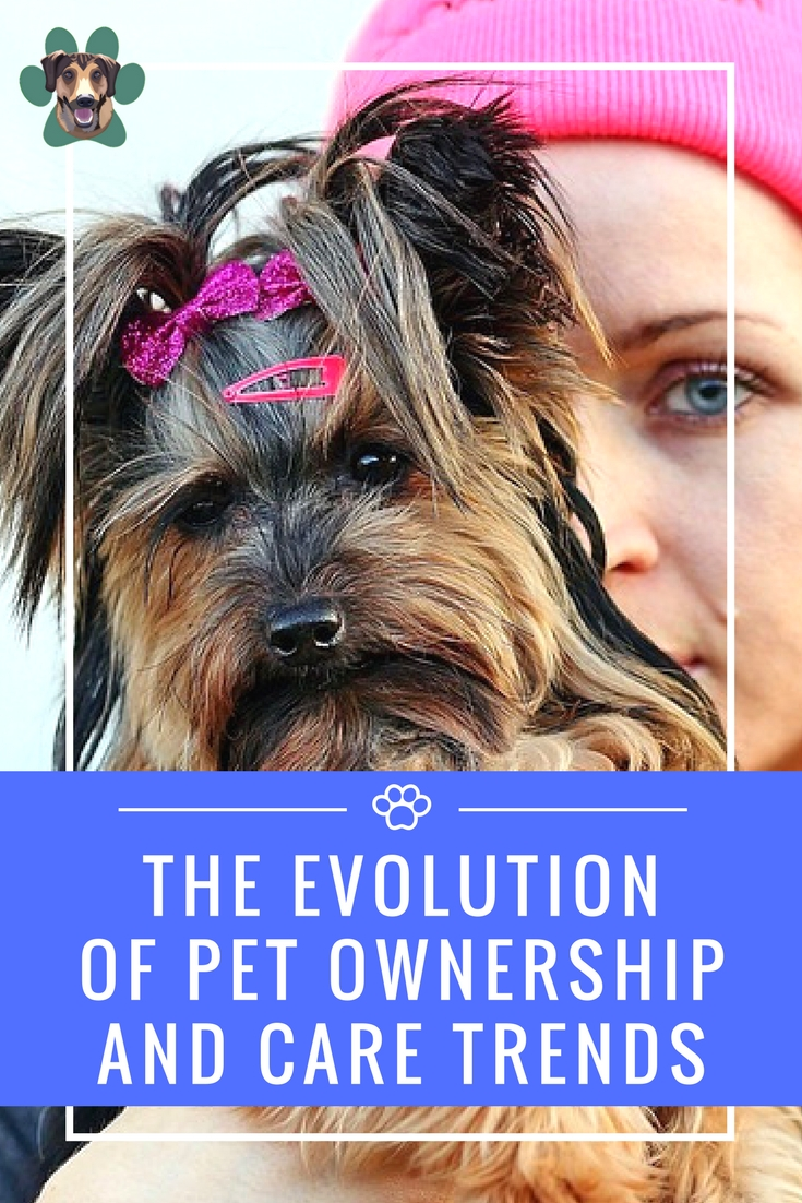 The way people see pets today has greatly evolved from a time when a dog was the keeper of the yard, relegated to a house with his name tag. These are very different times when it comes to pet ownership and care trends.
