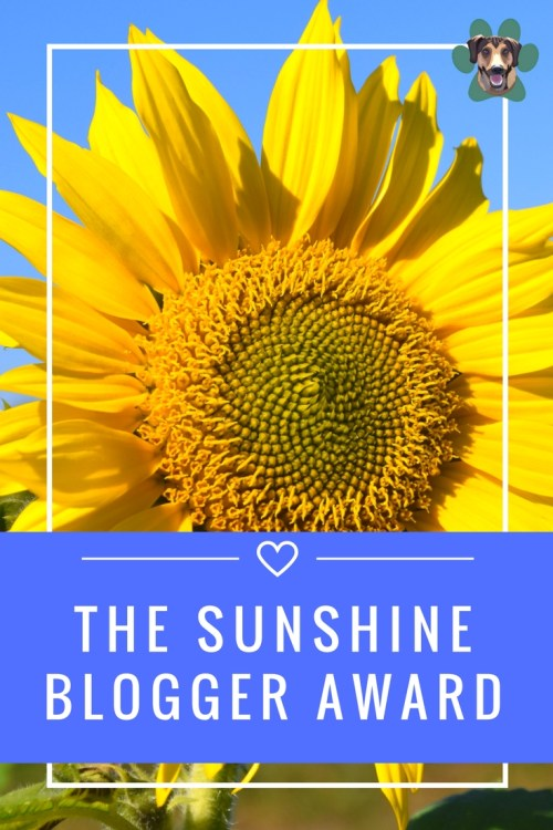 The Sunshine Blogger Award is an award given by bloggers to bloggers. It is an awesome way to get to know other bloggers. It is a wonderful way to promote and network with other like-minded creatives.