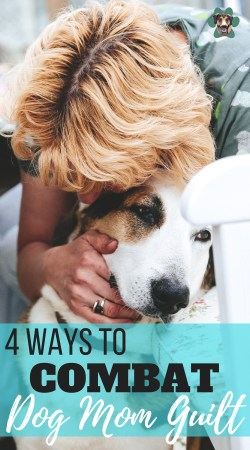 If you work full time like me, it is hard not to feel Dog Mom Guilt. No one wants to leave Pooch at home for such a long time during the day. Thankfully, there are things you can do to ensure you can keep the balance between working your job and looking after your dog. Here are 4 ways to balance working and your pup.