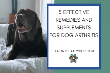5 Effective Remedies and Supplements for Dog Arthritis