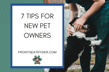 These 7 Tips Will Make You the Best New Pet Owner Possible