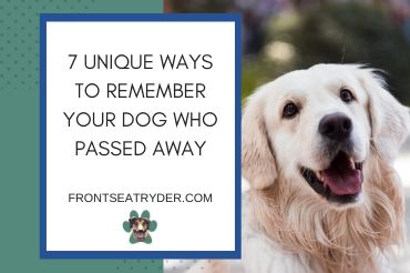 7 Unique Ways to Remember Your Dog Who Passed Away