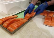 """n this Friday, April 10, 2015 photo, Canadian certified organic farm-raised King Salmon filets are placed on a tray in a store in Fairfax, Va. Overeating or under-eating 10 foods and nutrients contributes to nearly half of U.S. deaths from heart disease, strokes and diabetes, a study released on Tuesday, March 7, 2017, suggests. """"Good"""" foods that were under-eaten include: nuts and seeds, seafood rich in omega-3 fats including salmon and sardines; fruits and vegetables; and whole grains. (AP Photo/Alex Brandon)"""