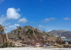 Damaged palm fronds lay on Baie Orientale beach, after the passing of Hurricane Irma, in Saint Martin, Sunday, Sept. 10, 2017. Irma cut a path of devastation across the northern Caribbean, leaving thousands homeless after destroying buildings and uprooting trees. Significant damage was reported on the island that is split between French and Dutch control. (AP Photo/Amandine Ascensio)
