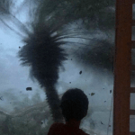 Puerto Rico Still Stumbles In The Dark A Month After 'Maria'
