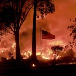Ashes And Stinging Smoke Mark Devastation In Wine Country