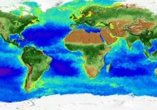 NASA has captured 20 years of seasonal changes in a new global map of the home planet. (Nov. 17)