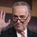 Schumer's Moment: Shutdown Puts Spotlight On Dem Leader