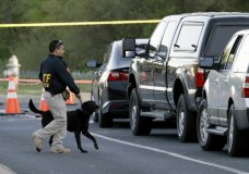 """An agent the Bureau of Alcohol, Tobacco, Firearms and Explosives works with his dog near the site of Sunday's explosion, Monday, March 19, 2018, in Austin, Texas. Fear escalated across Austin on Monday after the fourth bombing this month — this time, a blast that was triggered by a tripwire and demonstrated what police said was a """"higher level of sophistication"""" than the package bombs used in the previous attacks. (AP Photo/Eric Gay)"""