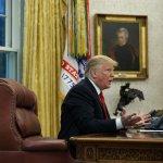 Trump Asks Turkey For Audio, Video Evidence On Khashoggi