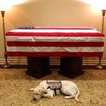Washington To Pay Respects, Bid Farewell To George H.W. Bush