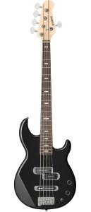 bassgitar