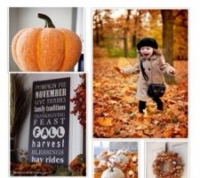 Pumpkin-Patch-Halloween-Decoration-Inspiration-Ideas-www.frostedevents.com-Frosted-Events-Blog
