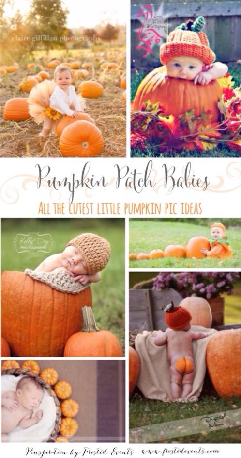 Pumpkin Patch Babies Pictures Of Pumpkins Kids
