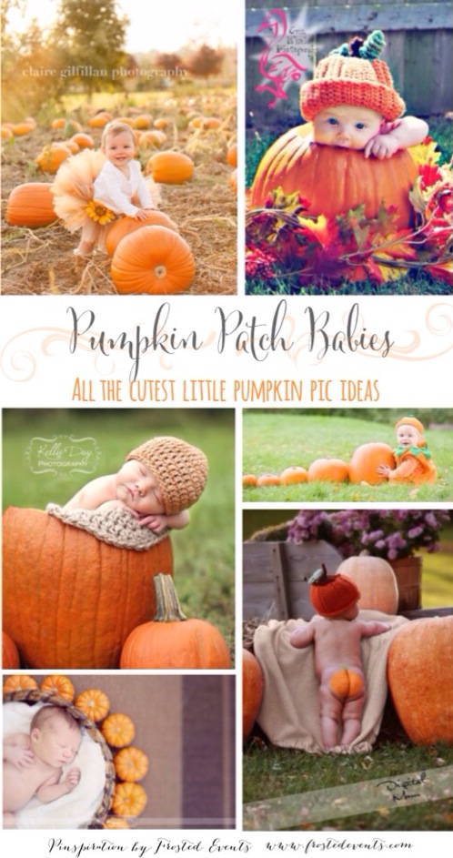 Pumpkin Patch Babies! Pictures of Pumpkins Ideas and Inspiration for Cute Pumpkin Patch Baby Photos Pics www.frostedevents.com