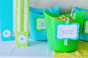 popcorn-bar-bright-fun-first-birthday-party-josh-frostedeventscom-1