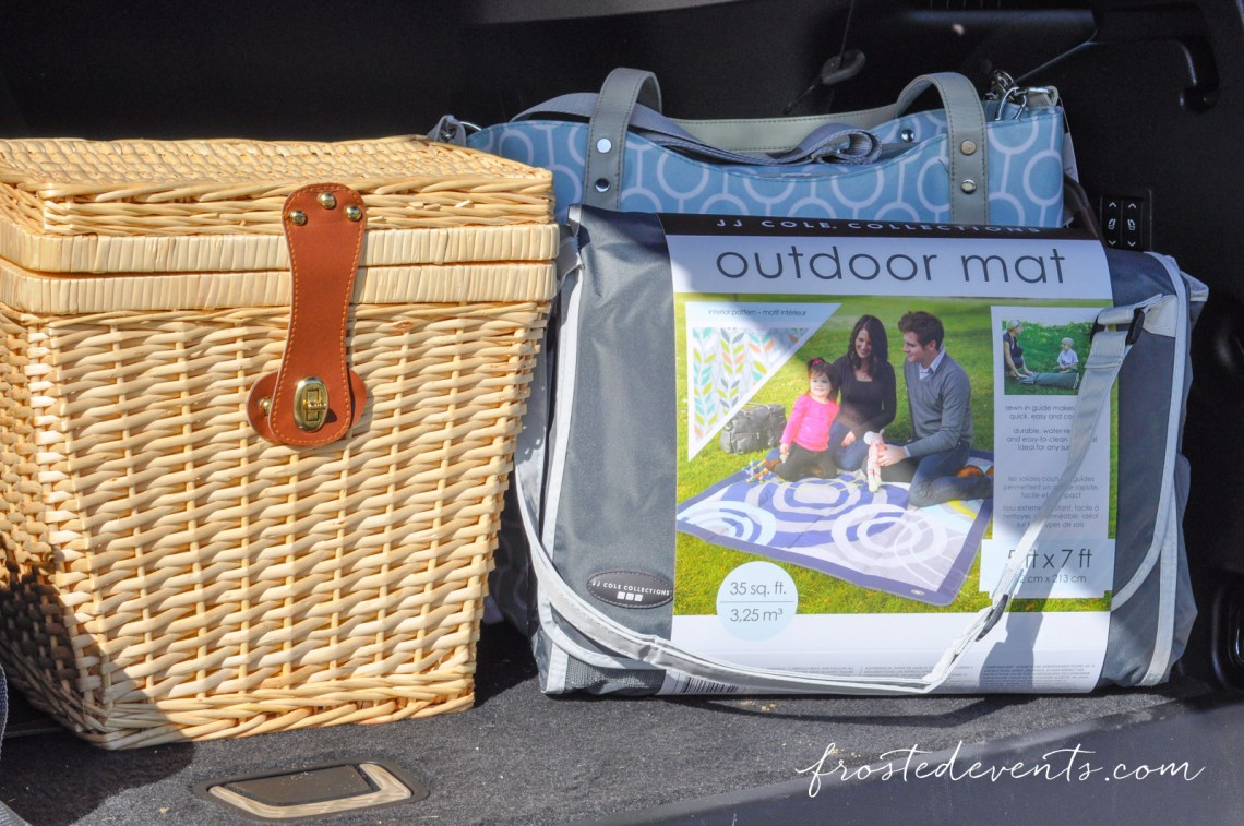 Picnic with Toddler Day Trip Diaper Bag Essentials