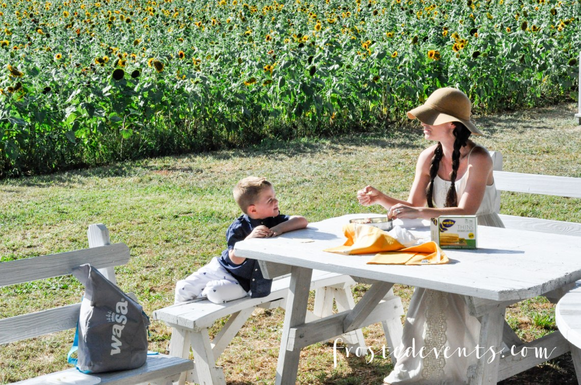 Picnic Recipes and Pick Your Own Flowers Farms in VA Sunflower fields via @frostedevents