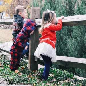How to Style Your Family Christmas Picture , Tips for taking a gorgeous family photo you'll treasure forever via Misty Nelson @frostedevents #bgoshbelieve