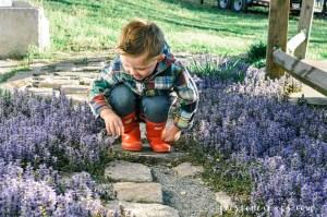 Seasonal Allergies Medicine for Kids Childrens Allergy Relief Symptoms Claritin via Misty Nelson mom blogger frostedmoms.com @frostedevents
