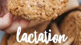 Lactation Cookies - How to Make Them, Where to Buy Them and how they help breastfeeding moms increase milk supply -- frostedblog