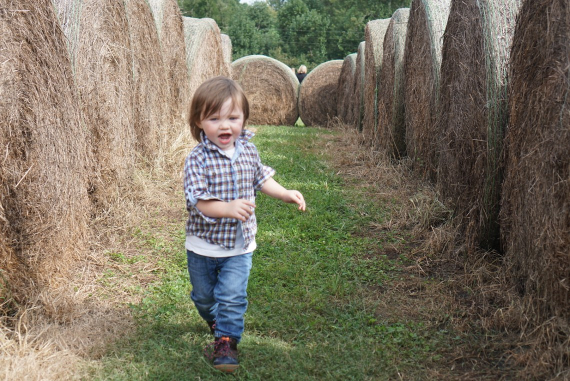Corn Mazes in NC - Pumpkin Patches and Fall Things to Do - North Carolina - Alpha and Omega - boy playing football