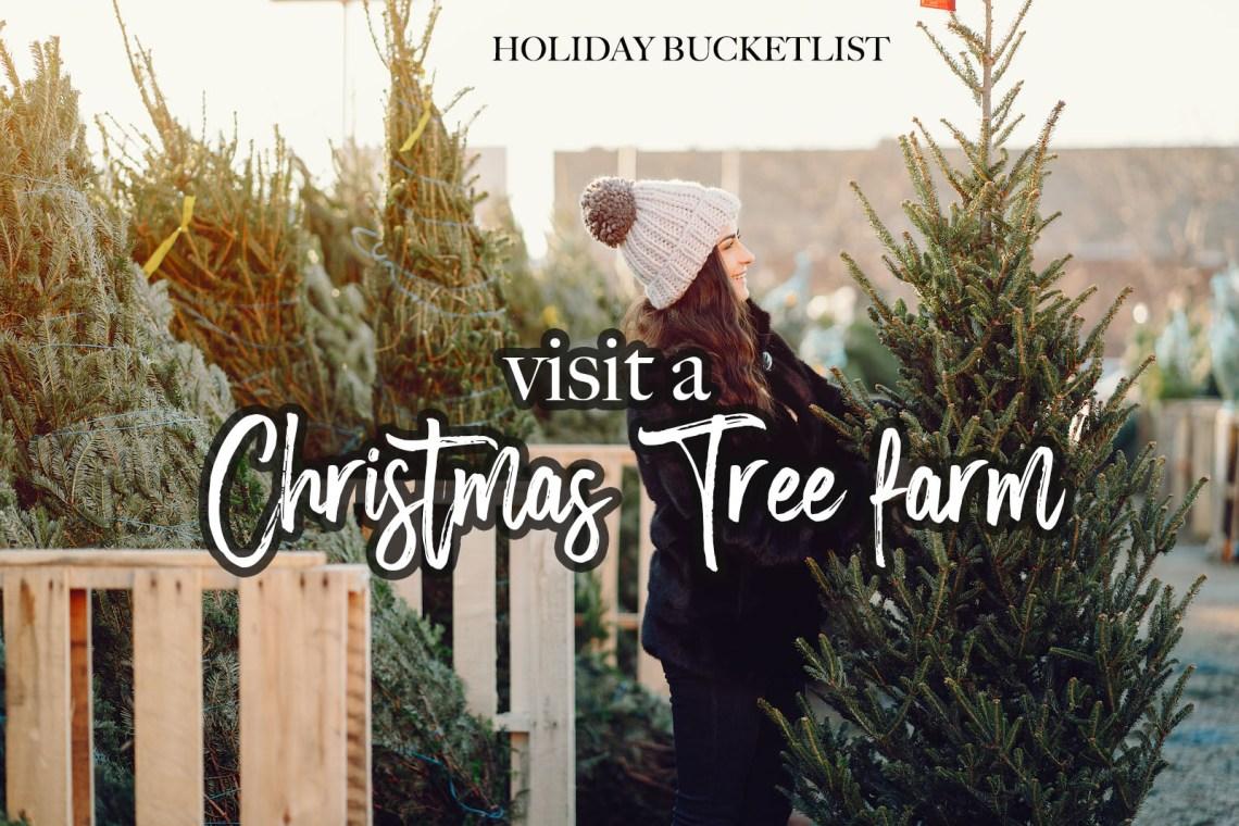 Christmas Trees Near Me - Cut Your own tree farm- Holiday Bucketlist
