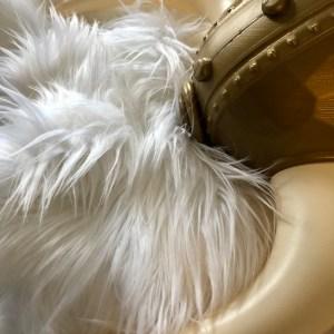 Ullr White Fur Helmet