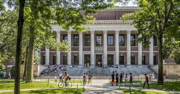 Harvard Summer Program Banner